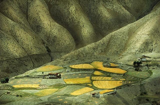 [转]大地景观艺术肌理 - 景观论坛 - RENEW+